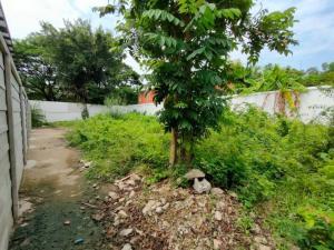 For SaleLandOnnut, Udomsuk : Hot Sale !!! Beautiful Land 81 SqWa, Sukhumvit 71, Pridi 26, Suitable for House Building