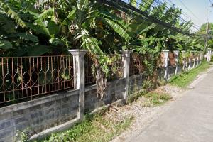 For SaleLandKasetsart, Ratchayothin : Land for sale on Phaholyothin Road, Bang Khen (the entrance of the MRT Green Line)