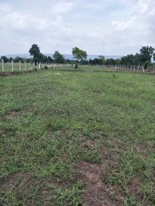 For SaleLandLop Buri : Cheap land
