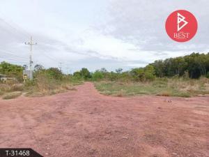 For SaleLandSamut Songkhram : Land for sale 5 rai 73.0 square wah, Bang Ja Kreng, Samut Songkhram.