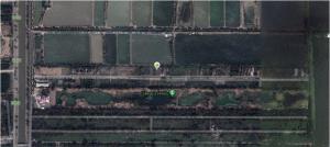 ขายที่ดินรังสิต ธรรมศาสตร์ ปทุม : ที่ดินแปลงสวย 220 ตรว. ถ.รังสิต-นครนายก