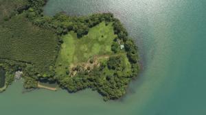 ขายที่ดินตราด : ขายที่ดิน ติดทะเล 3 ด้าน เป็นโฉนดที่ดิน จังหวัดตราด