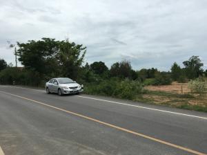 For SaleLandSuphan Buri : Land for sale 4 rai 3 ngan Sam Chuk Suphan next to concrete road.