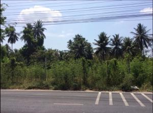 For SaleLandRama5, Ratchapruek, Bangkruai : Land for sale, good location, 12 rai, Nakhon In Road, Rama 5.