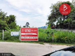 ขายที่ดินพัทยา บางแสน ชลบุรี : ขายที่ดิน เนื้อที่ 1 งาน 71.0 ตารางวา บางเสร่ ชลบุรี