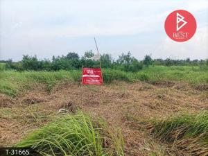 For SaleLandNakhon Nayok : Land for sale, 1 ngan, 63 square wah, Bang Luk Suea Nakhon Nayok Province