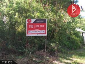 For SaleLandSamui, Surat Thani : Land for sale, 1 ngan, Koh Samui, Surat Thani.