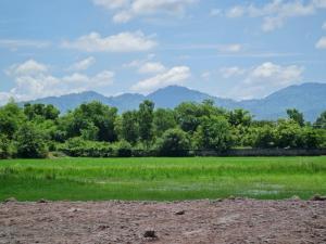 For SaleLandNakhon Nayok : Beautiful land, mountain view, Nakhon Nayok province, near the main road, size 528 sq.wa.