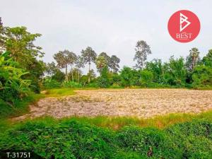 For SaleLandPrachin Buri : Agricultural land for sale 7 rai 3 ngan 24.0 square meters Kabin Buri Prachinburi
