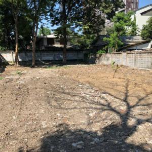 For RentLandSukhumvit, Asoke, Thonglor : Very cheap rent Beautiful land, Soi Sukhumvit 40, area 196 square wah (width 15.7 * 48).