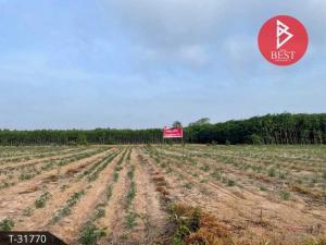 For SaleLandChachoengsao : Land for sale 7 rai, Chachoengsao, near Gateway City industrial estate