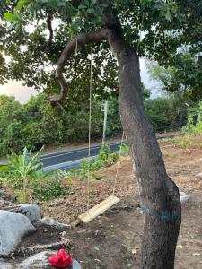 For SaleLandPhuket, Patong : Sea view Land for sale 1 rai (1,600 sqm) at Kamala.