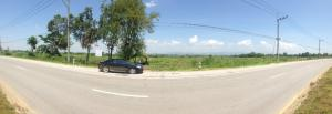 For SaleLandChiang Rai : Land for sale in Chiang Khong District Just 2 kilometers from the new government center.