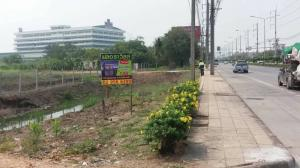 For SaleLandRamkhamhaeng,Min Buri, Romklao : 16 rai 1 ngan 86 square wa Chalong Krung Nong Chok Lam Phakchi Width 75 m. Length 396 m AN151