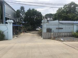 For SaleWarehouseMahachai Samut Sakhon : Sale House for sale with factory warehouse. Total of 7 buildings in Bang Yang Subdistrict, Krathum Baen District, Samut Sakhon Province