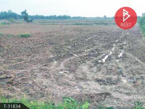 For SaleLandKalasin : Land for sale 1 rai 2 ngan 80.0 square wah Kham Muang Kalasin suitable for business