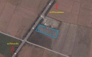 For SaleLandSuphan Buri : Land for sale in beautiful land on the royal road 333, Suphanburi, Chainat.
