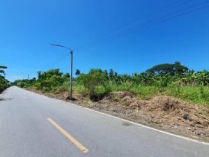 ขายที่ดินนครปฐม พุทธมณฑล ศาลายา : 📢 ขายที่ดิน 1 ไร่ ** หน้าติดถนน หลังติดคลอง **