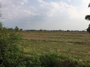 For SaleLandLamphun : Land for sale 9 Rai, Lamphun.