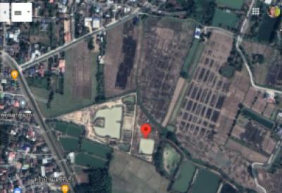 For SaleLandChiang Rai : Land for sale after six intersection fresh market, Phan district Chiang Rai
