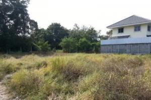 For SaleLandOnnut, Udomsuk : Land for sale, size 260 square wah, Soi Sukhumvit 101, Punnawithi 27, Bang Chak Subdistrict, Phrakhanong District