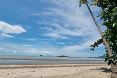 For SaleLandSamui, Surat Thani : Beachfront land for sale 3-2-65 rai at Don Sak