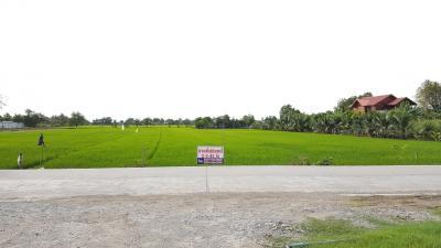 For SaleLandRangsit, Patumtani : *** Cheap sale *** Land in Soi Wat Tha Kian, Khlong Phra Udom, Pathum Thani 2-2-42 Rai, near Ratchaphruek Road.
