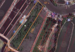 For SaleLandSamut Songkhram : Land for sale in Mueang Samut Songkhram