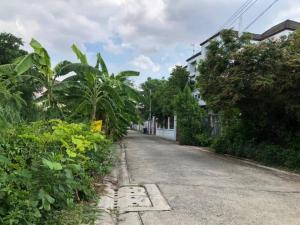 For SaleLandKaset Nawamin,Ladplakao : Land for sale, Mayalap (98 square wah), Soi Prasert Manukit 29. Or Ramintra 14, suitable to build homes 65,000 per wa