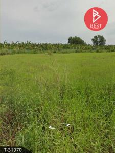 For SaleLandRangsit, Patumtani : Land allotment 200 square wa, Khlong 13, Nong Suea, Pathum Thani.