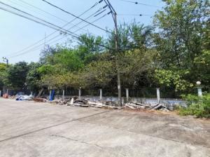 For SaleLandNakhon Pathom, Phutthamonthon, Salaya : The cheapest land for sale in Krisda Nakorn 18 project, Phutthamonthon Sai 3, 47.5 sq m.
