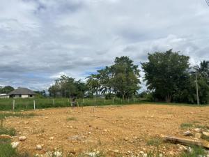 ขายที่ดินเชียงใหม่ : ที่ดินทำเลดีเหมาะสำหรับสร้างบ้านยกแปลง86 ตร.ว.