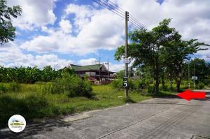 ขายที่ดินนครปฐม พุทธมณฑล ศาลายา : ขายที่ดินเปล่า 200 ตรว. ถมแล้ว หมู่บ้านออมไทย ถ.บรมราชชนนี