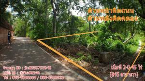 For SaleLandBangbuathong, Sainoi : Quick sale, land worth 2-0-45 rai, Soi Wat Sangkhathan, Nonthaburi.