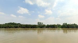 For SaleLandRathburana, Suksawat : Adjacent to the Chao Phraya River, 525 square Wah, Bang Kajao Phra Pradaeng, Samut Prakan Province AN167