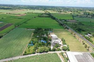 For SaleLandNakhon Pathom, Phutthamonthon, Salaya : House and land for sale, 3 rai 3 ngan, 48 sq wa near Kamphaeng Saen Temple, Nakhon Pathom.