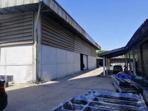 เช่าโกดังนครปฐม พุทธมณฑล ศาลายา : ให้เช่าโกดัง ถนนบรมราชชนนี พุทธมณฑลสาย2 เนื้อที่ 1 ไร่ พื้นที่ใช้สอย 800 ตารางเมตร