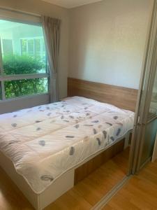 For RentCondoLadkrabang, Suwannaphum Airport : Room For Rent Lumpini On Nut - Lat Krabang 1  Size  23 sq.m 1st floors, C building