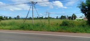 For SaleLandYasothon : Land for sale 15 rai, Chayangkun Road, Loeng Nok Tha, near Mukdahan.