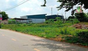 For SaleLandRangsit, Patumtani : Land, Lam Luk Ka 71 Road, Lat Sawai Subdistrict, Lam Luk Ka District, Pathum Thani