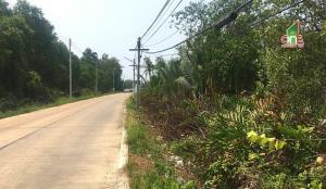 For SaleLandMahachai Samut Sakhon : Land near Bang Krachao Temple, Rama 2 Road, Bang Kachao Subdistrict Mueang Samut Sakhon District, Samut Sakhon