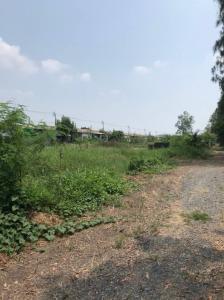 For SaleLandRamkhamhaeng,Min Buri, Romklao : Land for sale 400 sq Wah. Nong Chok, Khlong Soi 12, Khlong 12, east side, Lat Krabang, AN168