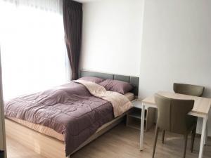 For RentCondoBangna, Lasalle, Bearing : Condo for rent Ideo O2 (Ideo O2)P40.