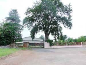 For SaleLandPrachin Buri : Land for sale 23 rai. Sale. Super discount. Good location in community and business.