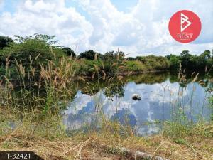 ขายที่ดินจันทบุรี : ขายที่ดินเปล่า พร้อมสวนลำใย อำเภอสอยดาว จังหวัดจันทบุรี