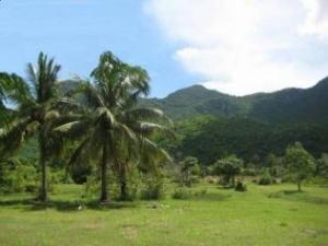 For SaleLandHua Hin, Prachuap Khiri Khan, Pran Buri : Beautiful land at Sam Roi Yot, Ban Phu Noi (Urgent Sale)