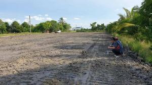 For SaleLandRangsit, Patumtani : Beautiful land divided into small plots. vacant land sub-plot for sale