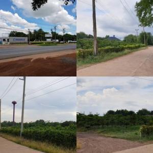 For SaleLandPrachin Buri : Land for sale, durian garden, 22 rai, with more than 500 trees, ready to collect good income, Prachinburi