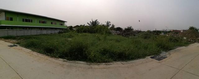 For SaleLandBang kae, Phetkasem : Land for sale 370 sq m in Om Noi area, Soi Petchkasem 91, orange area.