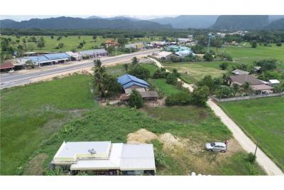 ขายที่ดินนครศรีธรรมราช : ที่ดินเปล่าวิวสวยทำเลดีใกล้หมู่บ้านคีรีวง อ.ลานสกา